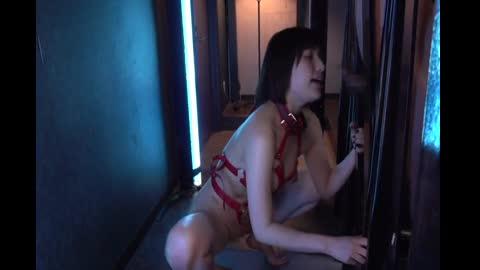 番号鸽媚藥BDSM 強力春藥與鹽射成為快樂地獄俘虜 若宮葉月 USBA-025
